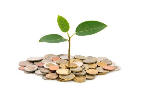 Scholarship-Funding-Organizations-bqQDzr4.jpg