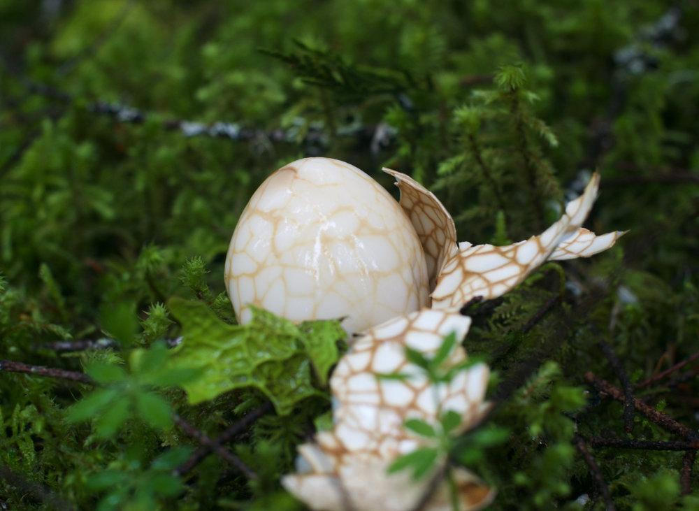 azure forest eggsmall.jpg