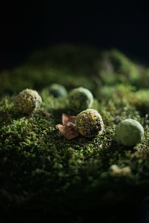 moss truffles 1 small.jpg