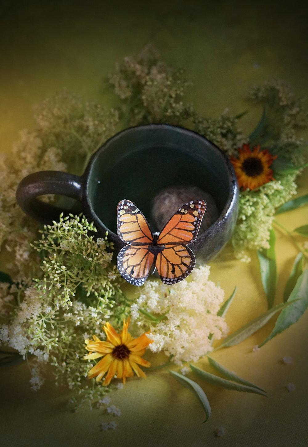 butterflytea1small.jpg