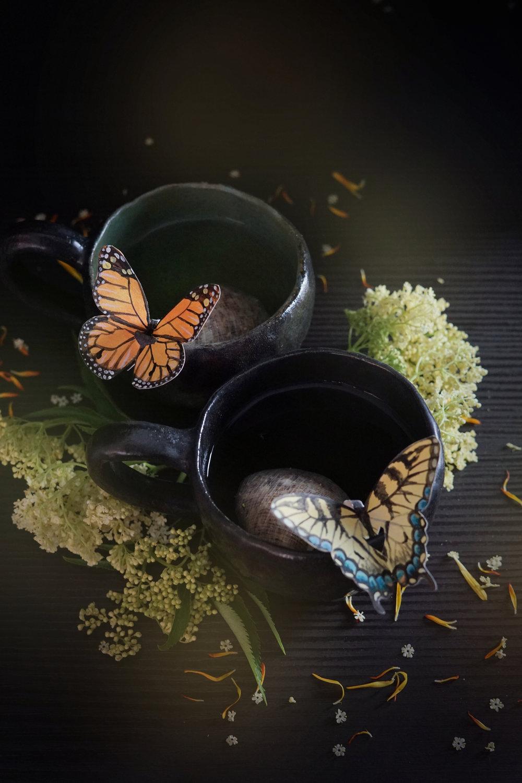 butterflytea3small.jpg