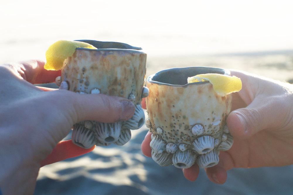 barnaclecups2.jpg