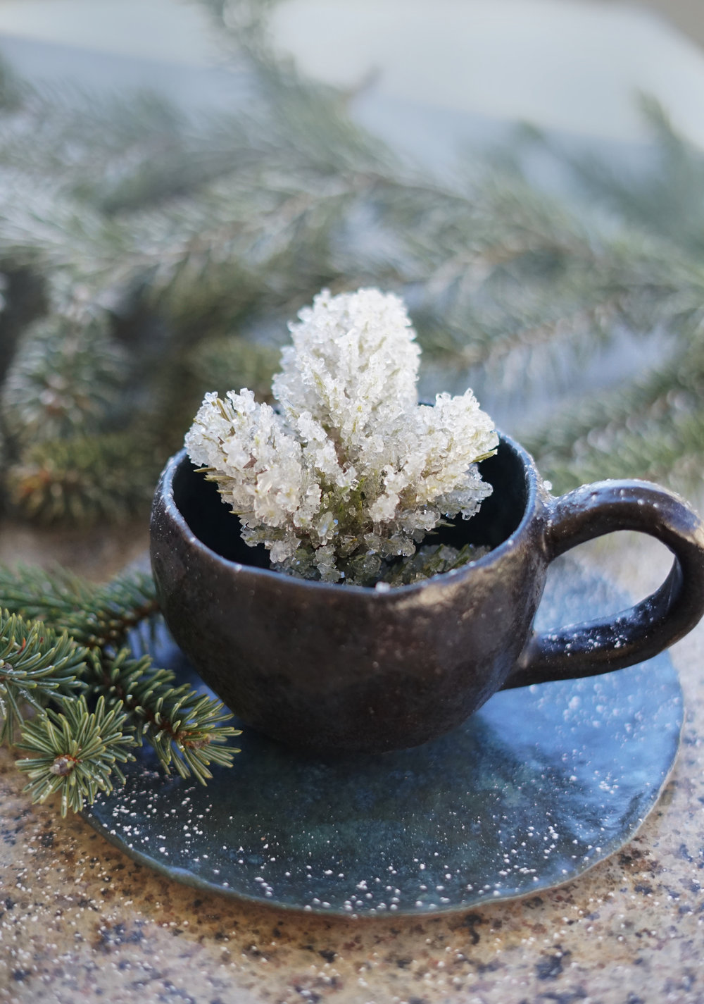 icespruce1small.jpg