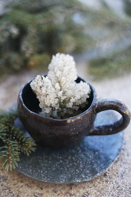 ice spruce 2 small.jpg