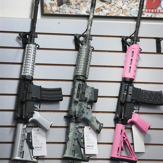 2017-02-27 guns.jpg