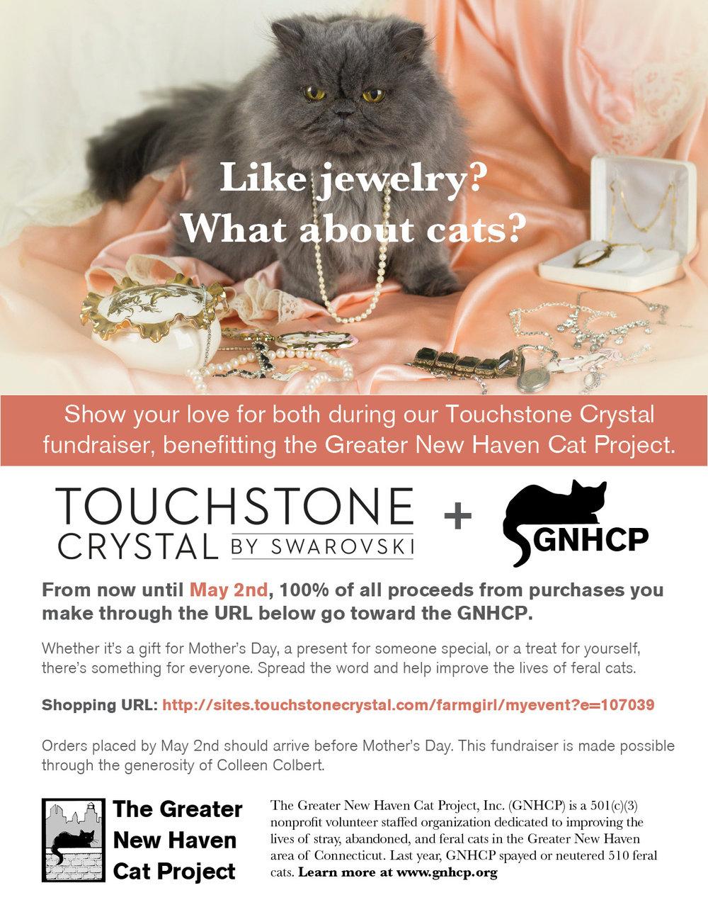 touchstonefundraiser-2.jpg