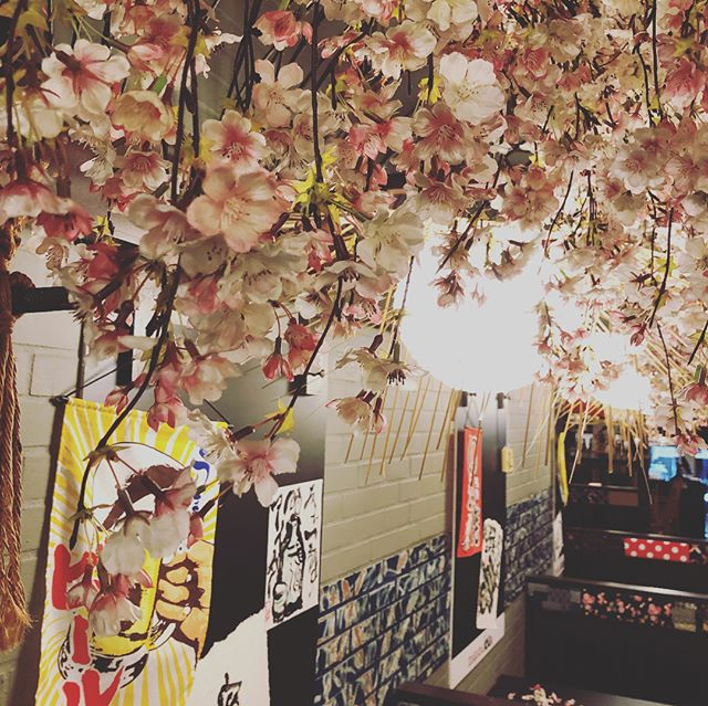 Sneak Peak: Come join ida to enjoy and celebrate cherry blossom season with authentic japanese food paired with cherry blossom sake in a room full of beautiful 🌸🌸🌸#nycrestaurants #izakaya #japan #japanesefood #japanesegastropub #spring #cherryblossom #izakayaida #nyc #vibes