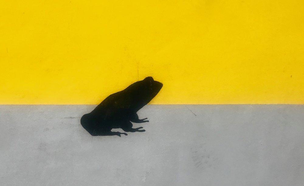 Frogtown-Diane-Evans-Los-Angeles.jpg