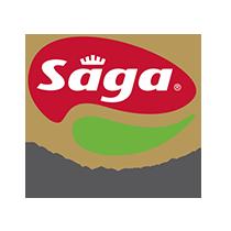 saga.png