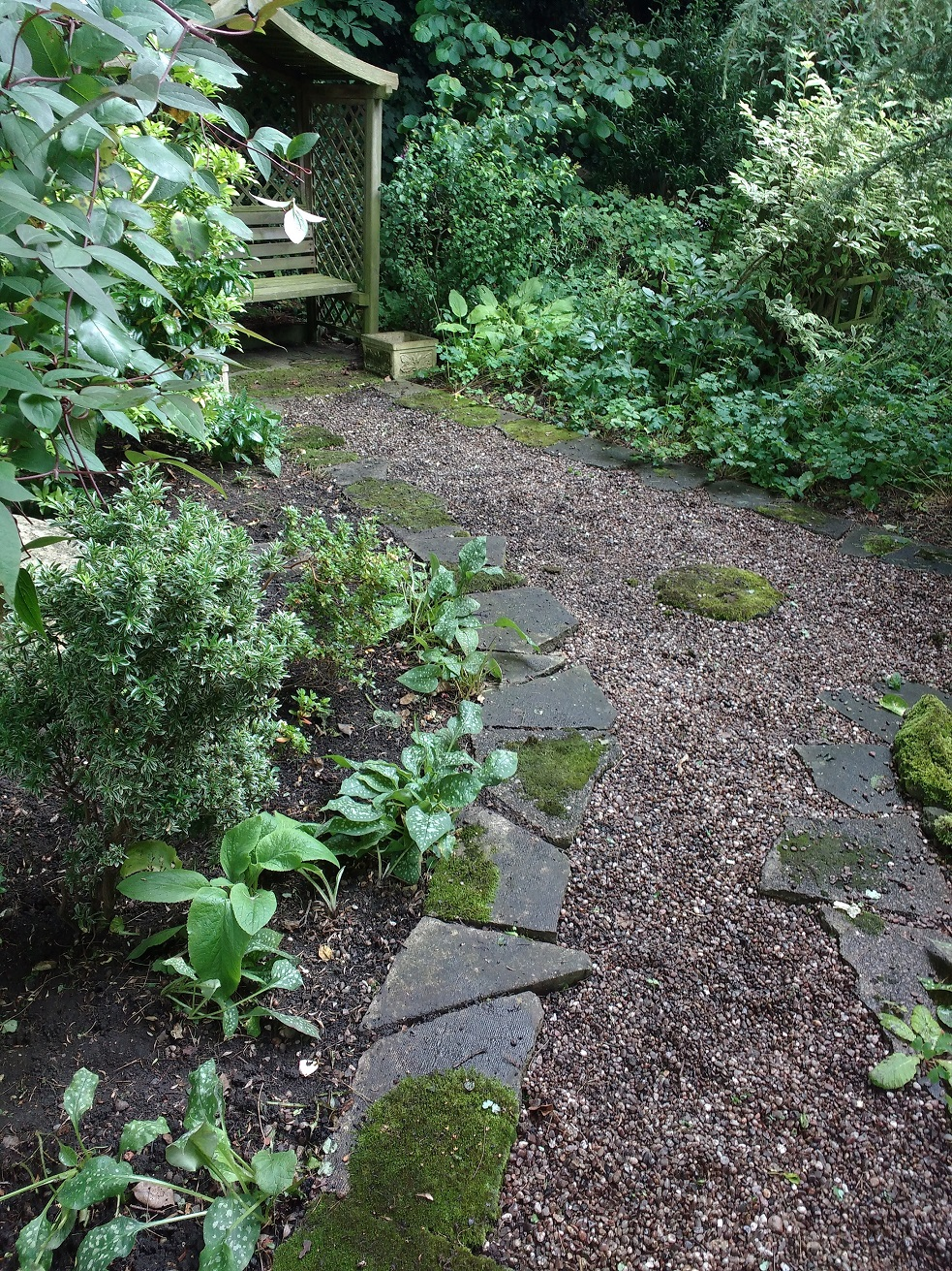 AFTER: a tidy path and borders filled with rescued plants