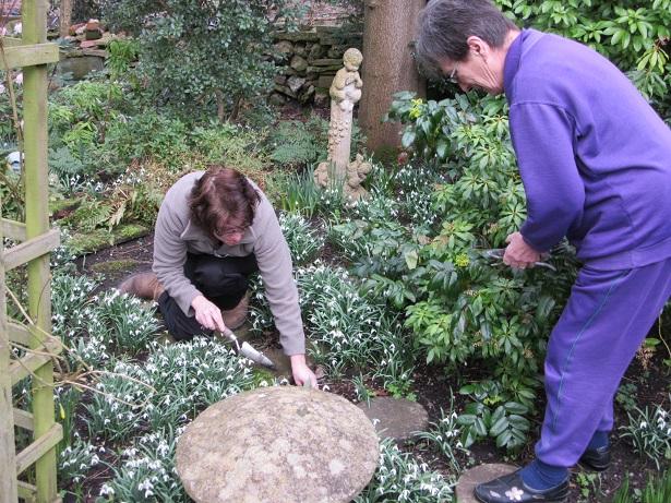 The Garden with the Gardener service