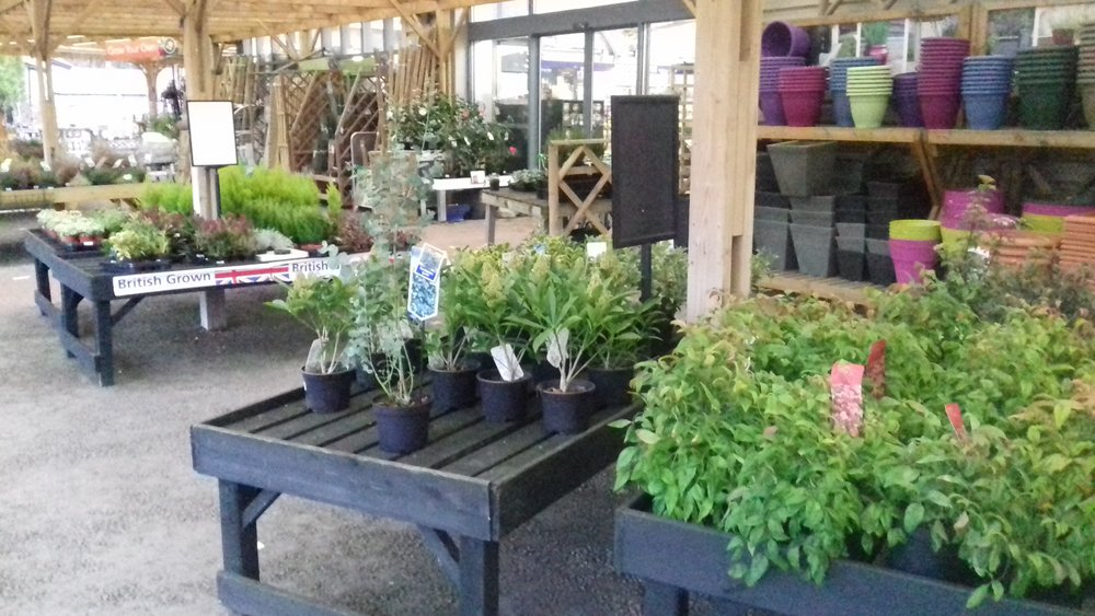 Selecting and sourcing plants.