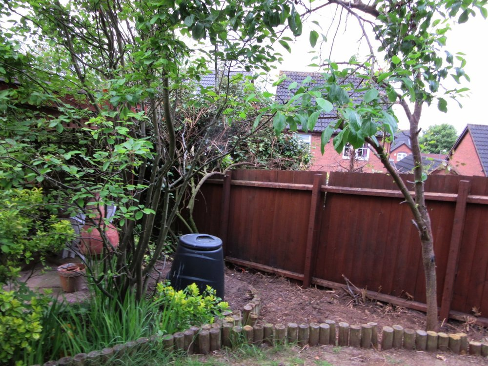 BEFORE: a tidy but uninspiring area