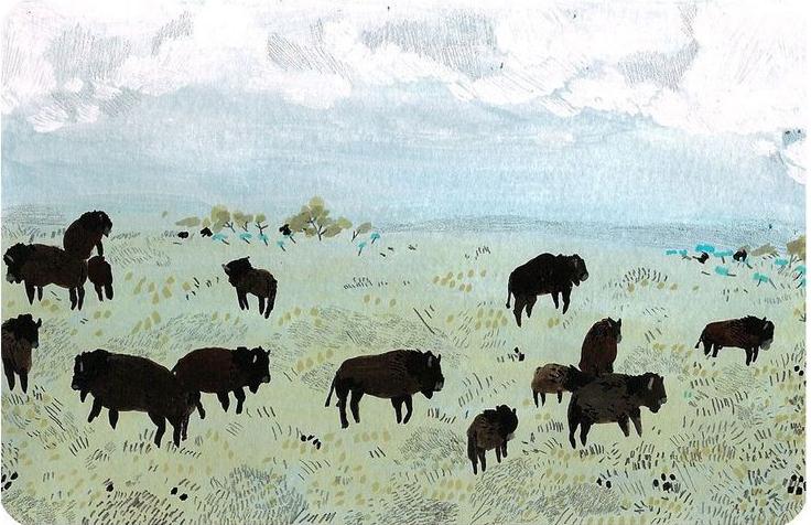 Buffalo by Becca