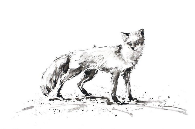 Julia Cassels: The Cunning Fox