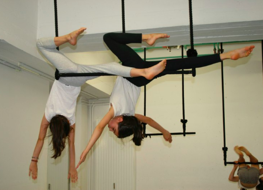 Flip Flap Circus