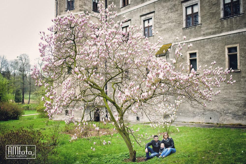 0039___Ilona&Pawel_narzeczenska___www-amfoto-pl__AMF_5088.jpg