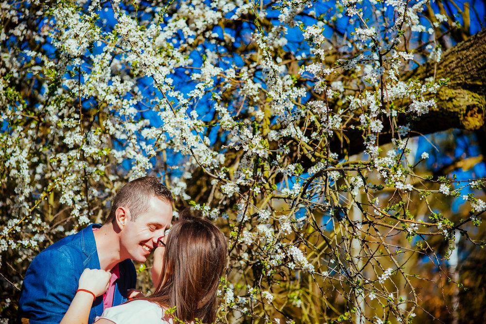 0053_Natalia&Marek________sesja_narzeczenska_ostrow_goluchow_dobrzyca_slupca_fotografia_slubna_www_amfoto_pl_AMF_9621.jpg