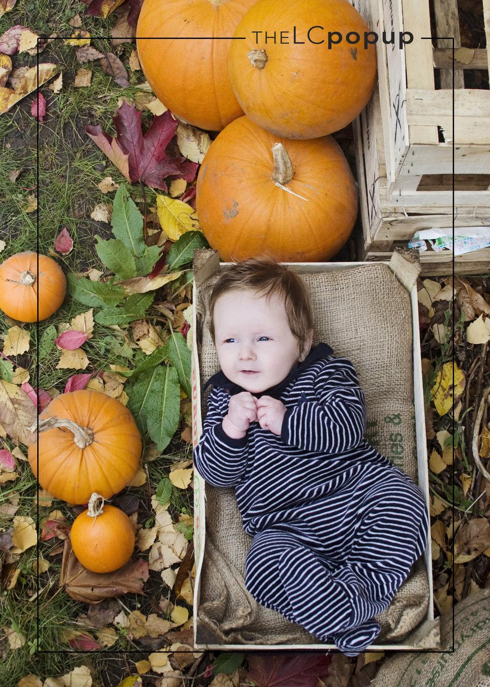 Wells Reuben Autumn 2015.jpg