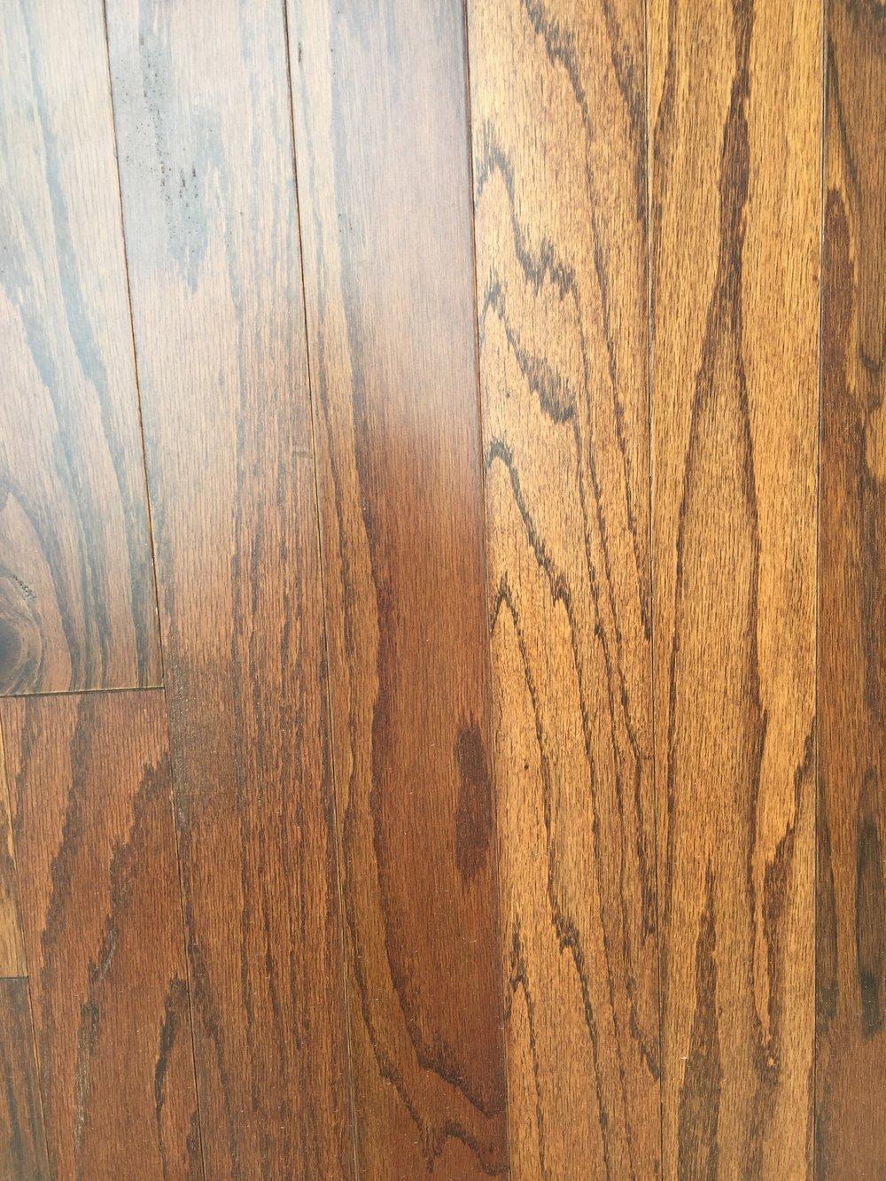 Woodmore - color: Oxford Oak