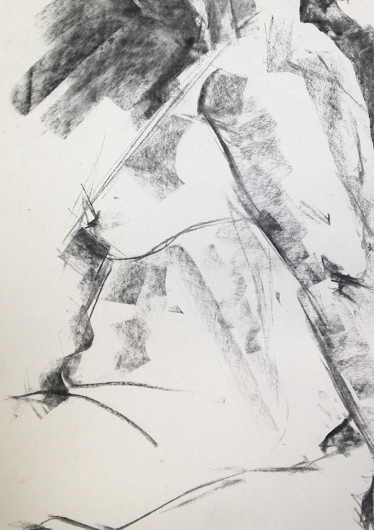 Charcoal on cartridge paper