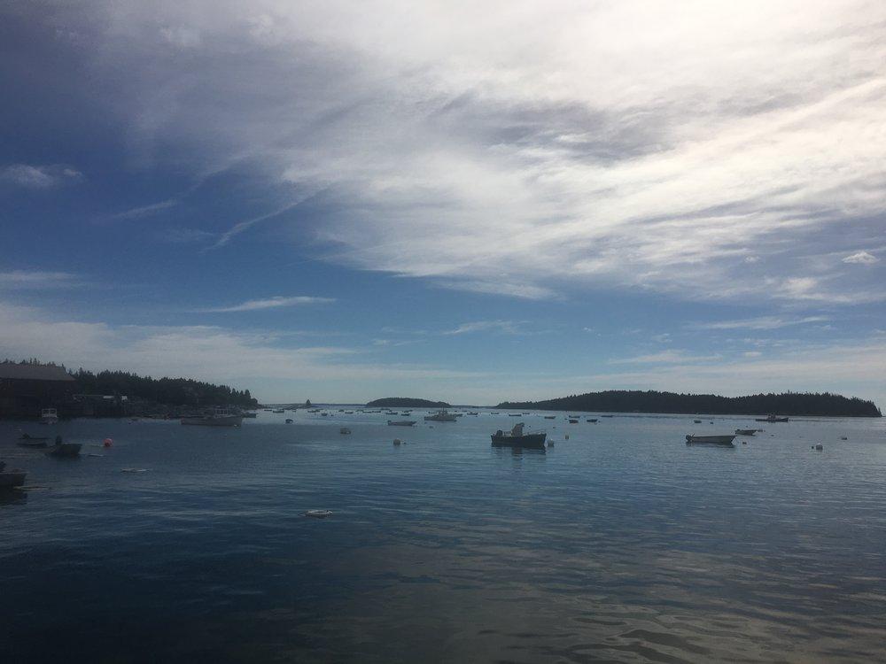 Measuring Coastal Resilience