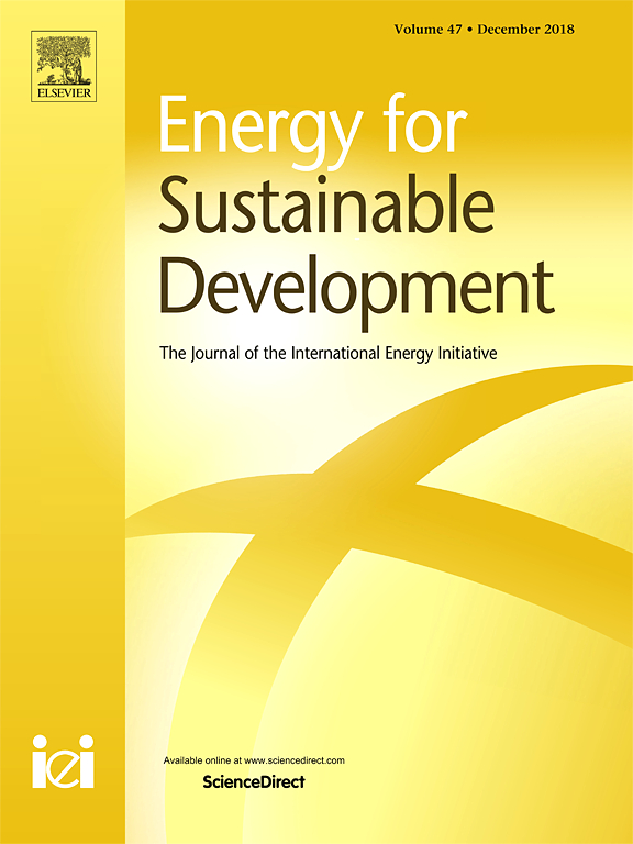 The role of government in industrial energy conservation in China: Lessons from the iron and steel industry