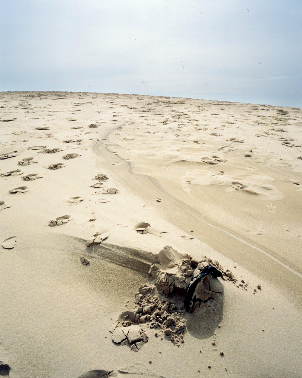 dune du pilat april18 - 010.jpeg