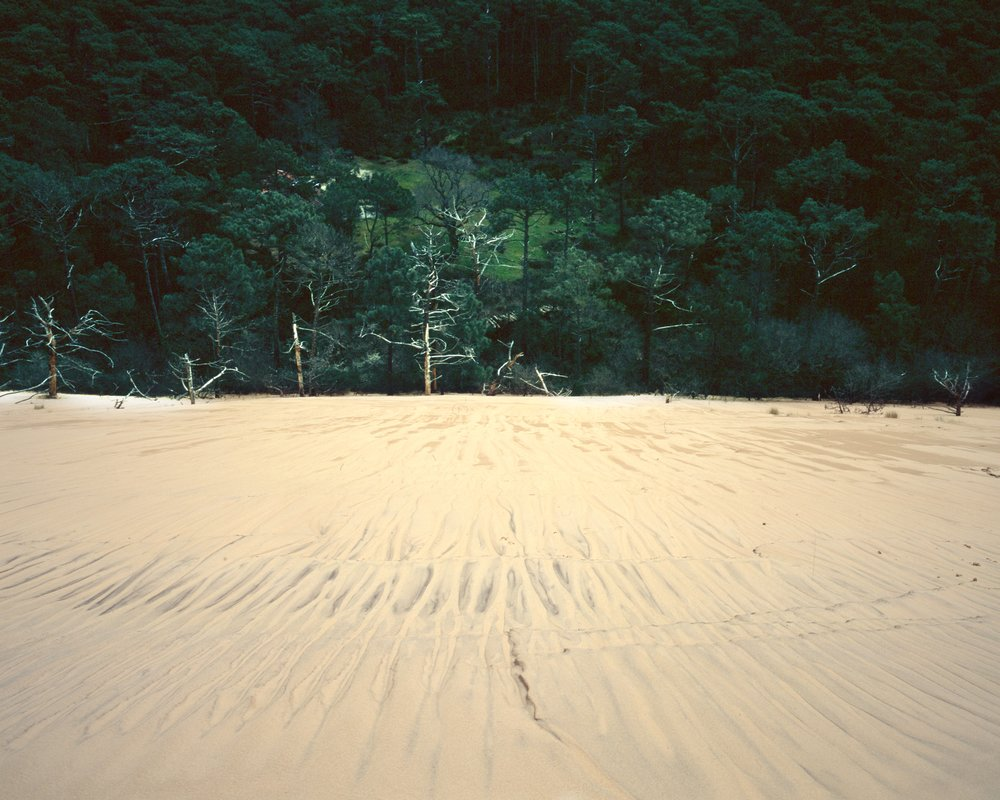 dune du pilat april18 - 008.jpeg