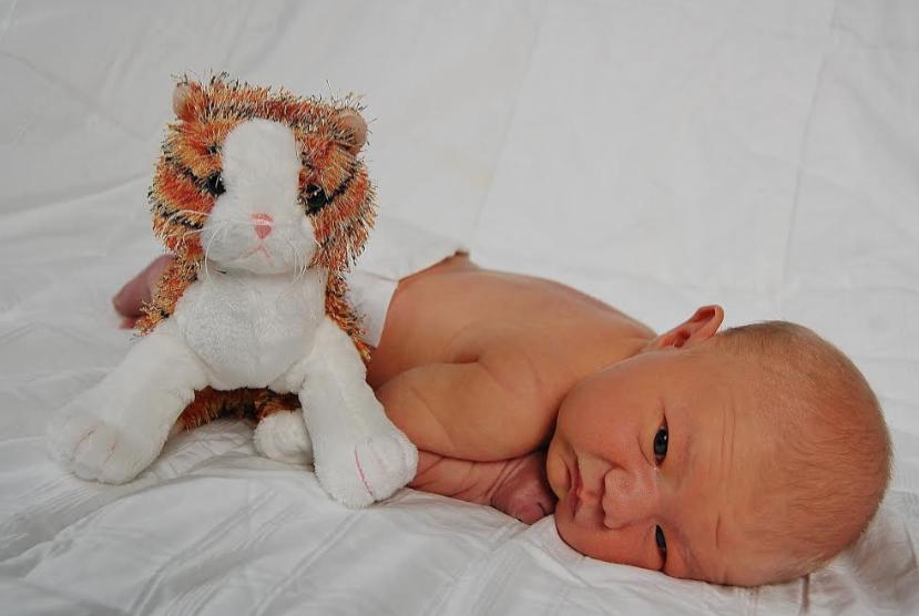 Vasectomy Reversal Baby #42