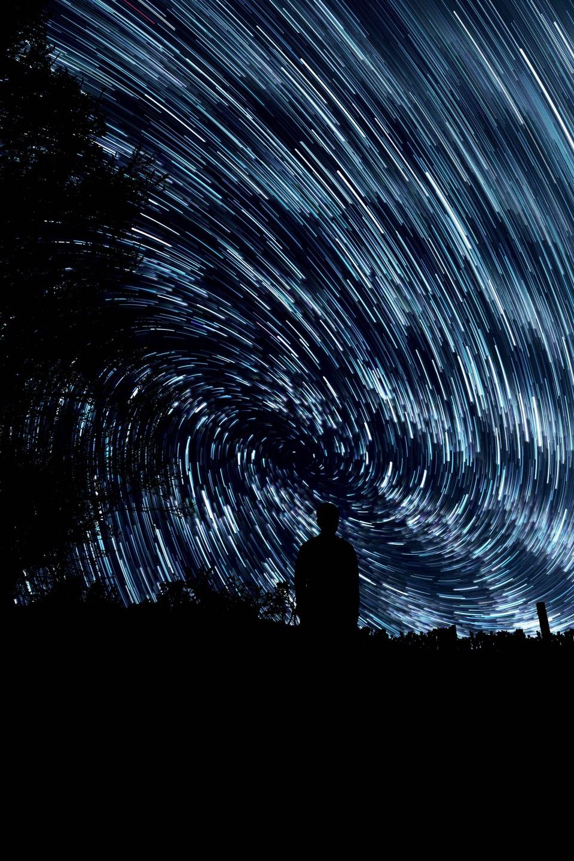 tree-silhouette-wing-night-star-texture-503365-pxhere.com.jpg
