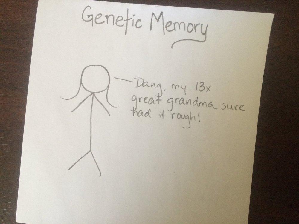 geneticmemory.jpg