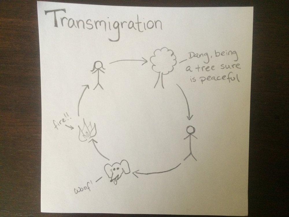 transmigration.jpg