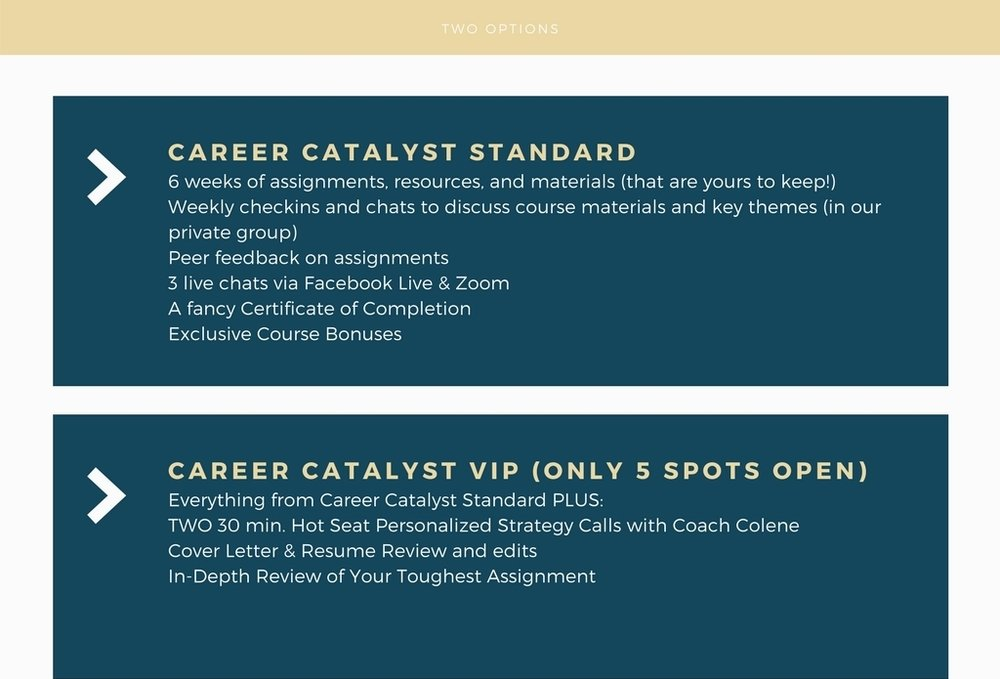 career catalyst (1).jpg