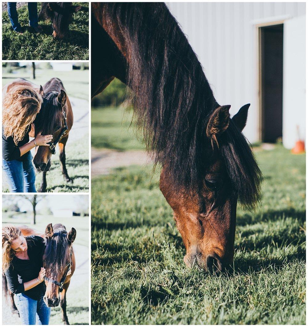 HorseMemorialSession_0002.jpg