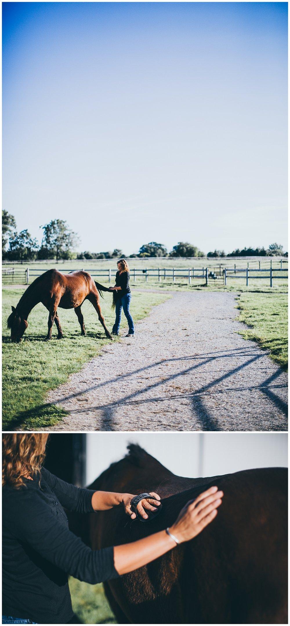 HorseMemorialSession_0003.jpg