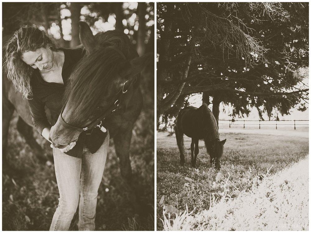 HorseMemorialSession_0016.jpg