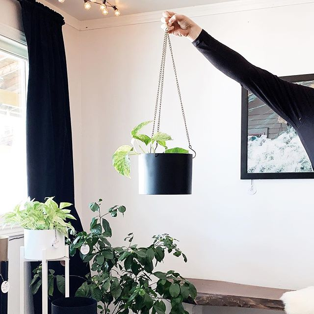We have one of our new full metal hanging pots left! What colour combination would you like to see next? Here until 3:00 today! #shoplocal #thesoo #plantstyling