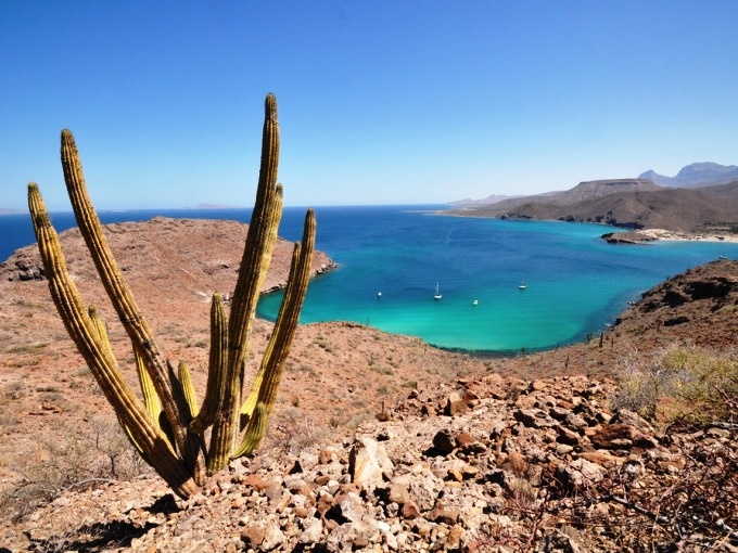 The Sea of Cortez, also known as the the Gulf of California.  The BLE ends here.