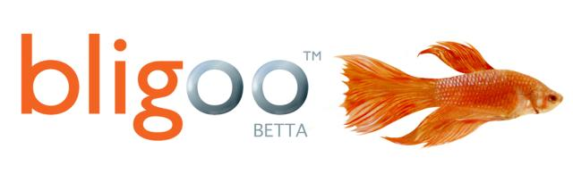 bligoo-logo.jpg