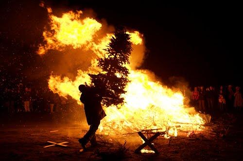 tree-christmas.jpg