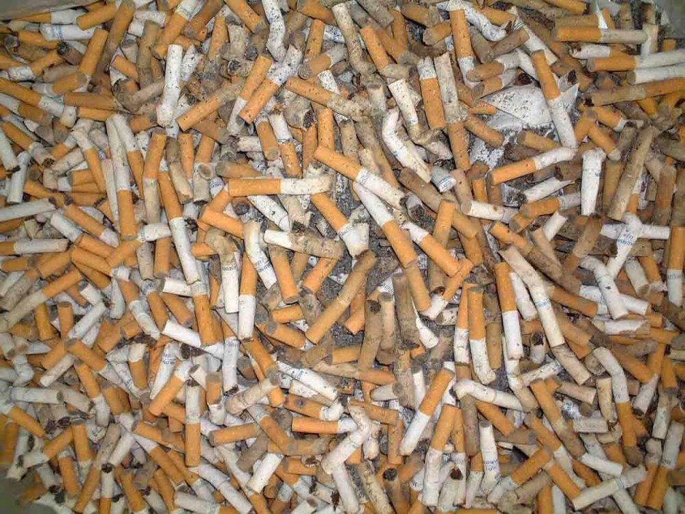 tabokokoaco.jpg