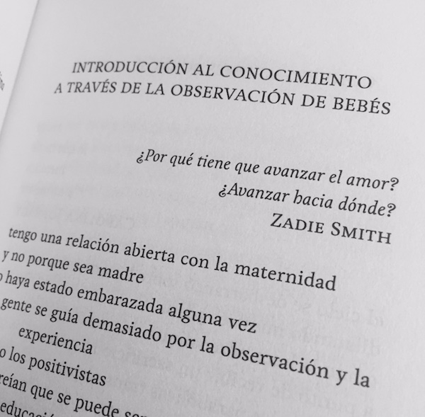 Ana Llurba | Vanity Dust