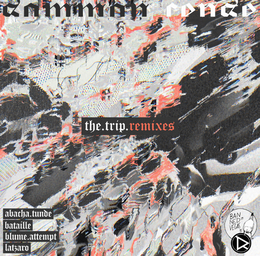 The Trip Remixes FreeDownload Drok Records.png