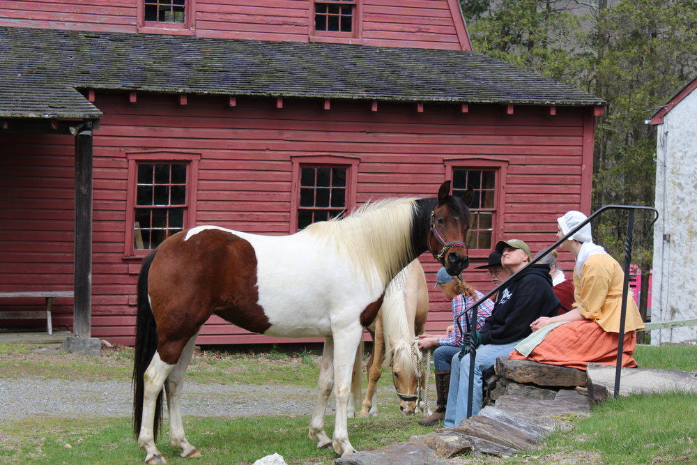 The stars of the sizzle reel were Smarty, the pinto, and Koda, the palomino, which is what Molly rides in the screenplay. We filmed for a day at the historic 160-acre Newlin Grist Mills in Pennsylvania, where you can still take blacksmithing classes.