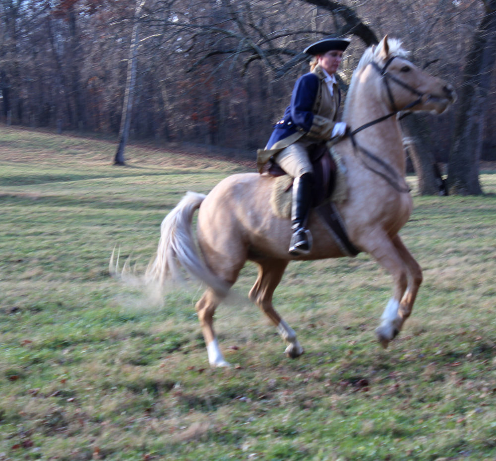 That's Koda showing off. He's workin' it to get a part in the actual film. He heard Molly rides a Palomino in the script.