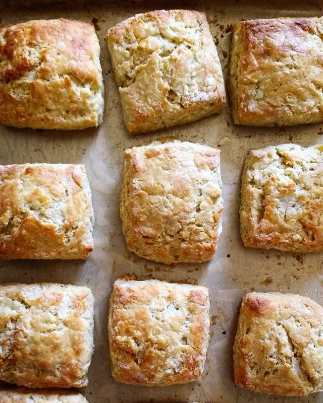 Treat your dad to a biscuit! These  lovelies will be @exo_kitchen this weekend!! #smallbatchabakery #bakery #tucson #arizona #biscuits #khorasanflour #bkwfarms #wholegrainbaking #bakingwithlocalflour #exokitchen