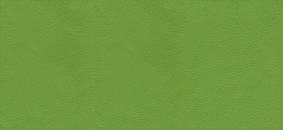 Classic Leather Apple Green