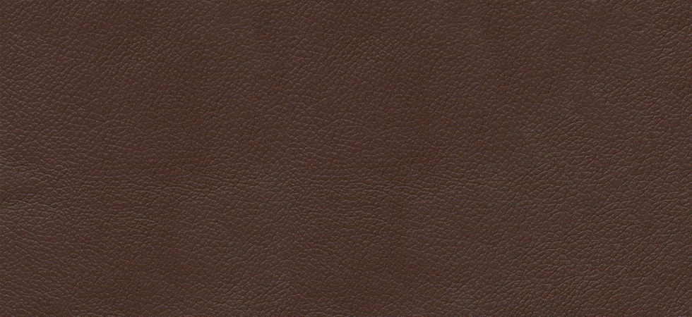 Classic Leather Brown