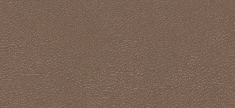 Classic Leather Cappuccino